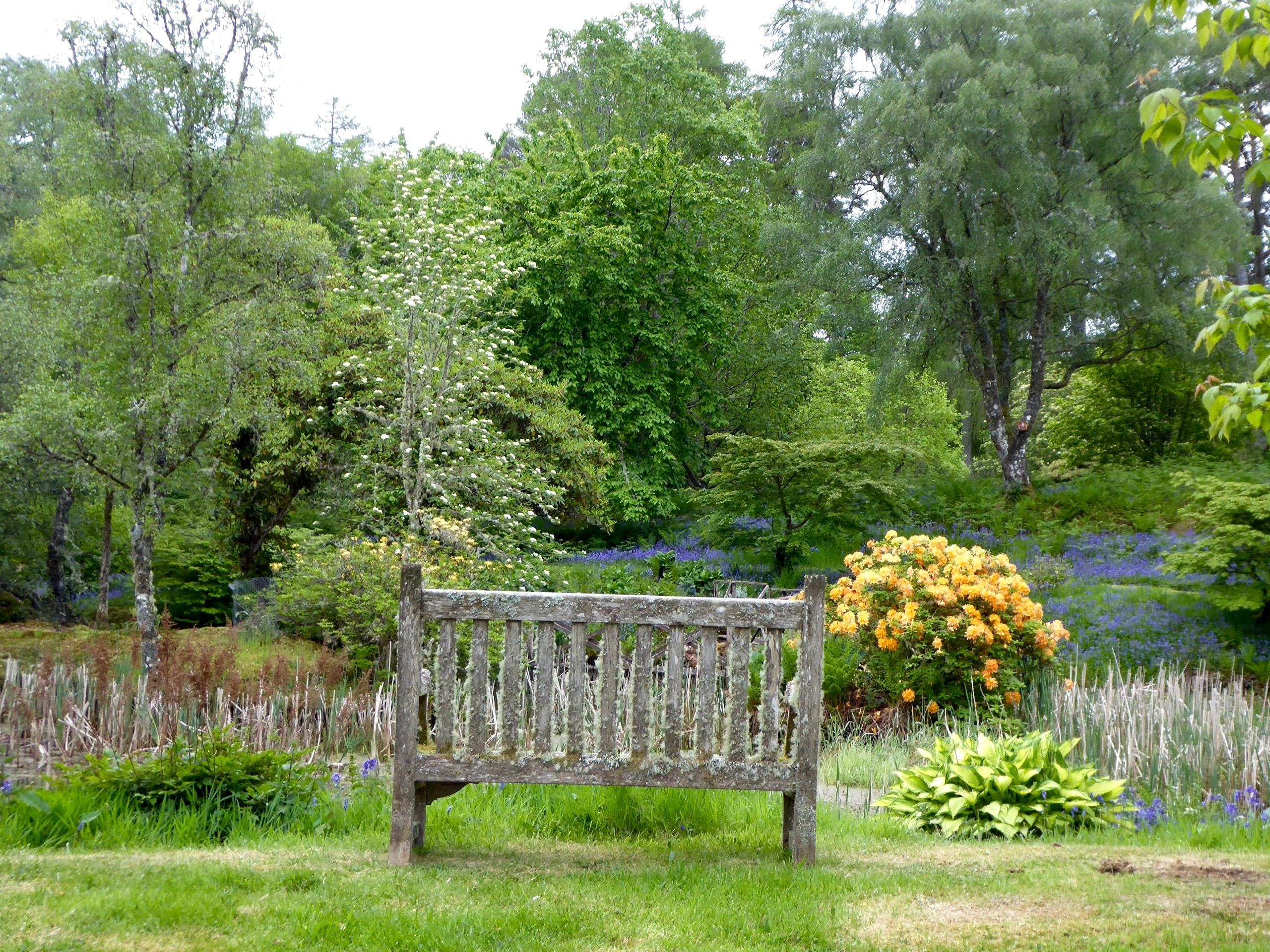 Achnacloich Garten