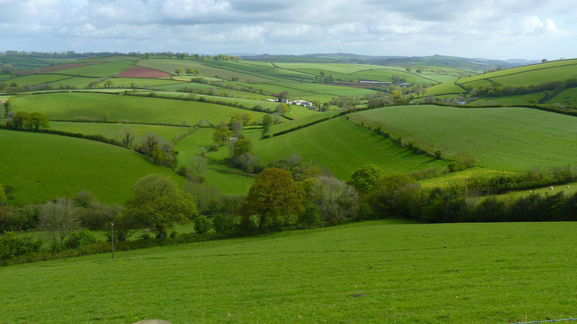 South Hams Landschaft bei Halwell