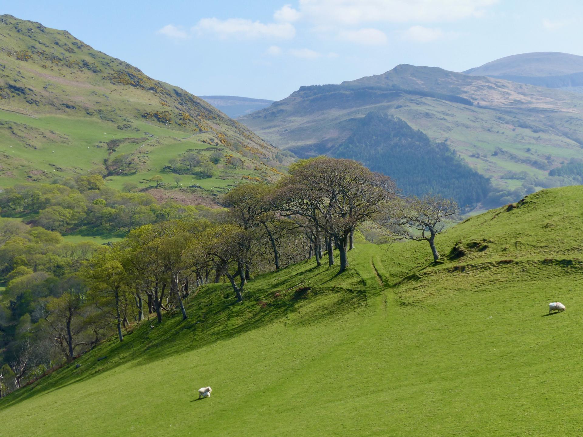 Wales- Abergynolwyn
