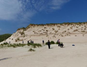 Wandern durch die Dünen
