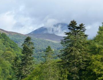 August: Perthshire
