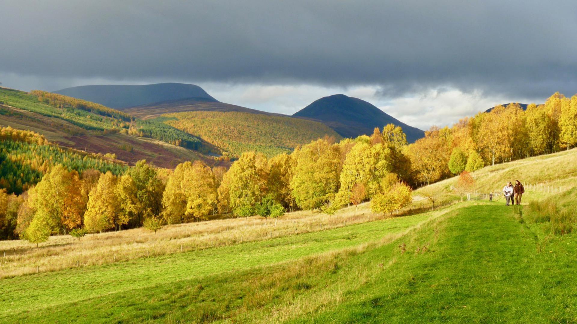 Perthshire Amber - Glen Tilt
