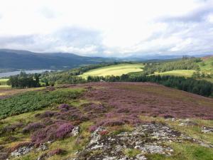 Moorlandshcaft bei Bearnock