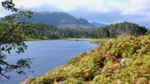 Loch Affric im Herbst