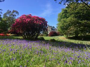 Der Garten von Achnacloich House, Argyll Wanderreise