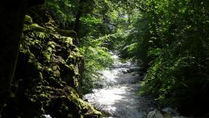 Argyll Fluß
