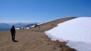 Creag Meaghaidh Gipfelplateau (Mai)