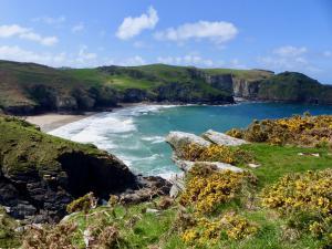 Farbenpracht Cornwall