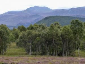 Lochnagar von Inver