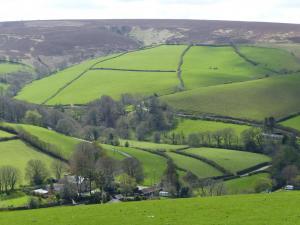 Exmoor Wiesen und Moor