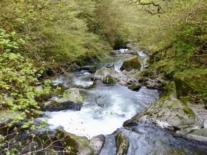 Lyn River
