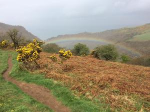 Regenbogen bei Lynton