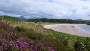 Heide und Sand