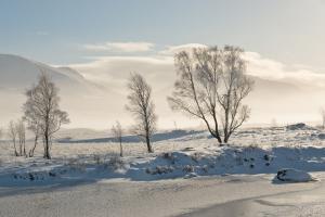 Frostiger Morgen in Rannoch Moor, Fotoreise Glencoe