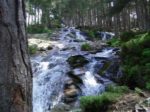 Wasserfall in den Cairngorms