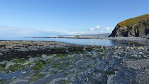 Küste bei Borth