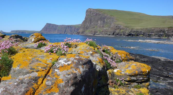 Skye Wanderreise - Moonen Bay